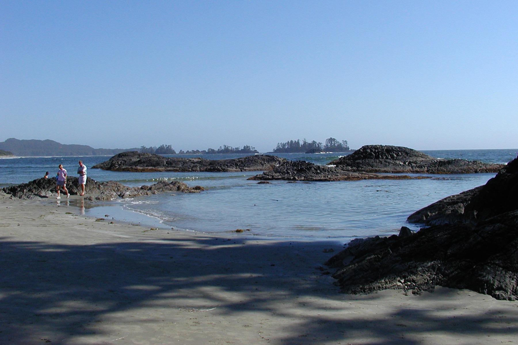 private beach picnic by seaplane in vancouver  victoria
