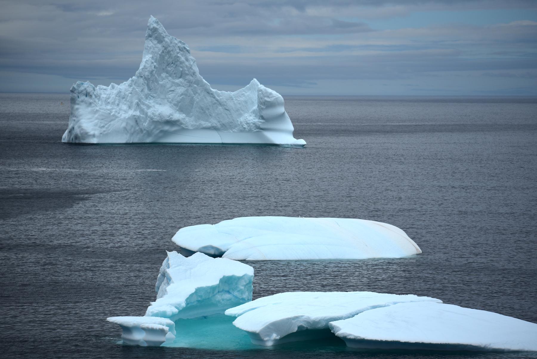 iceberg grates cove 1