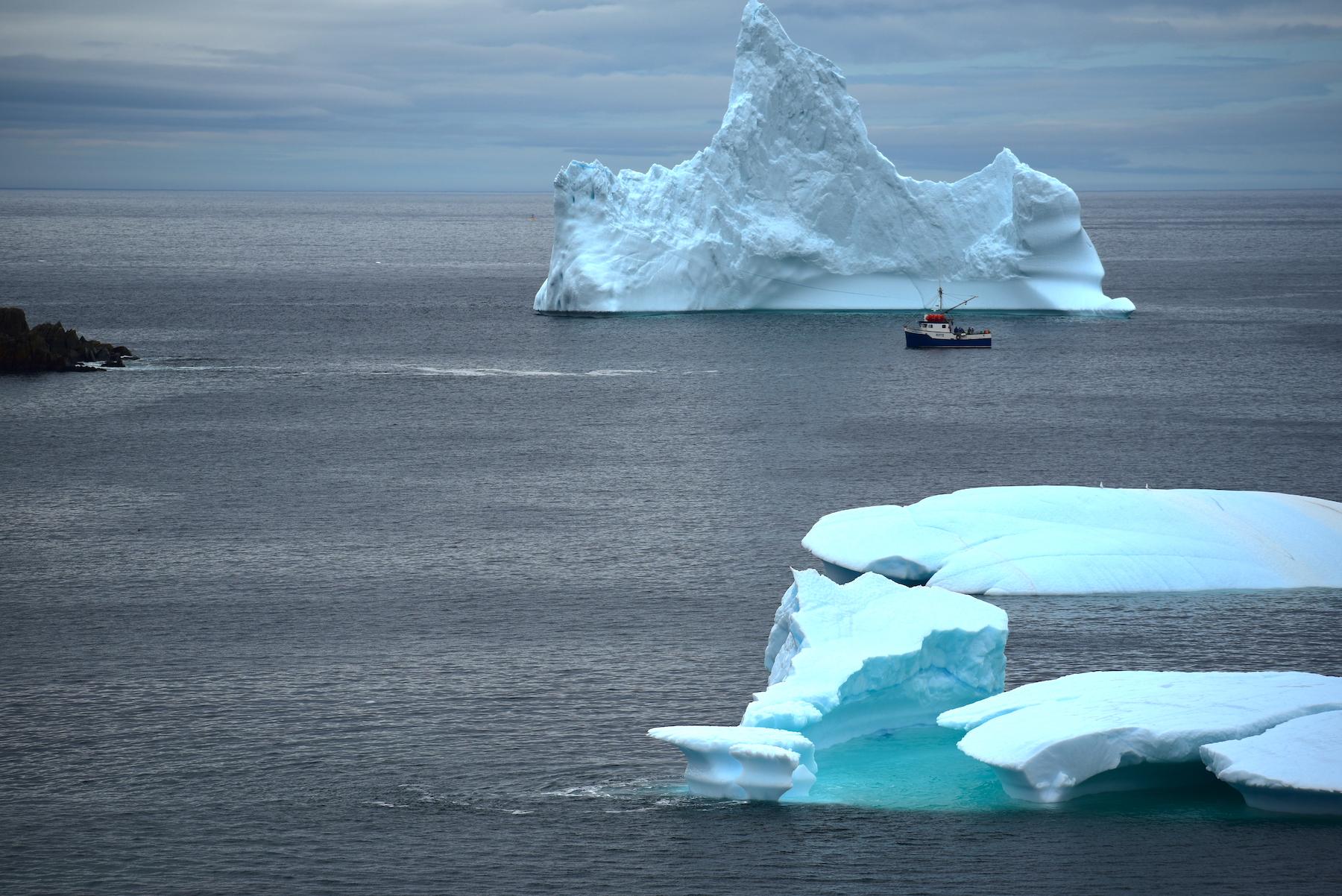 iceberg grates cove 2