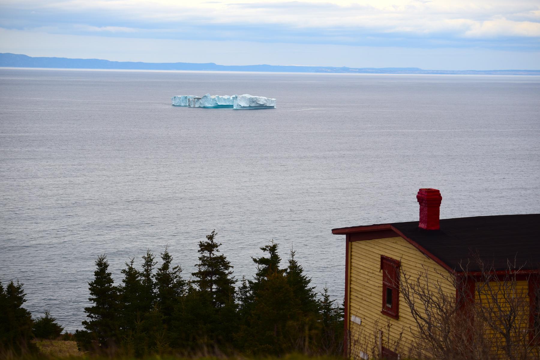 iceberg grates cove 5
